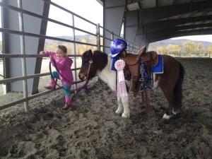 John Irish Performance Horses